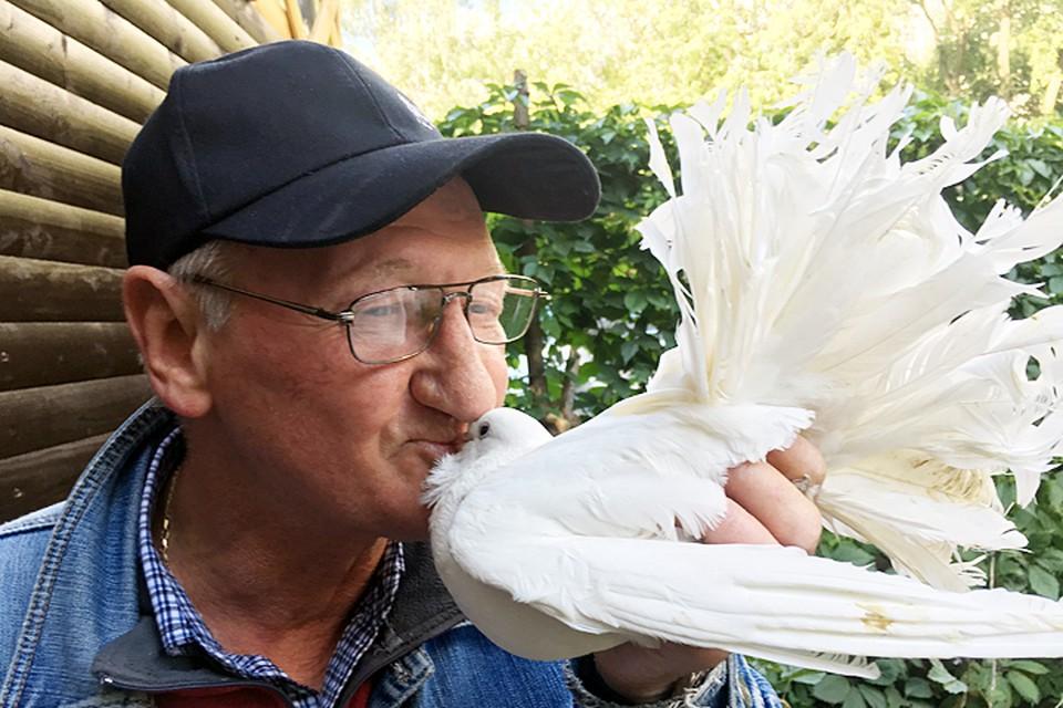 «Вот и целуйси там со своими голубями!»