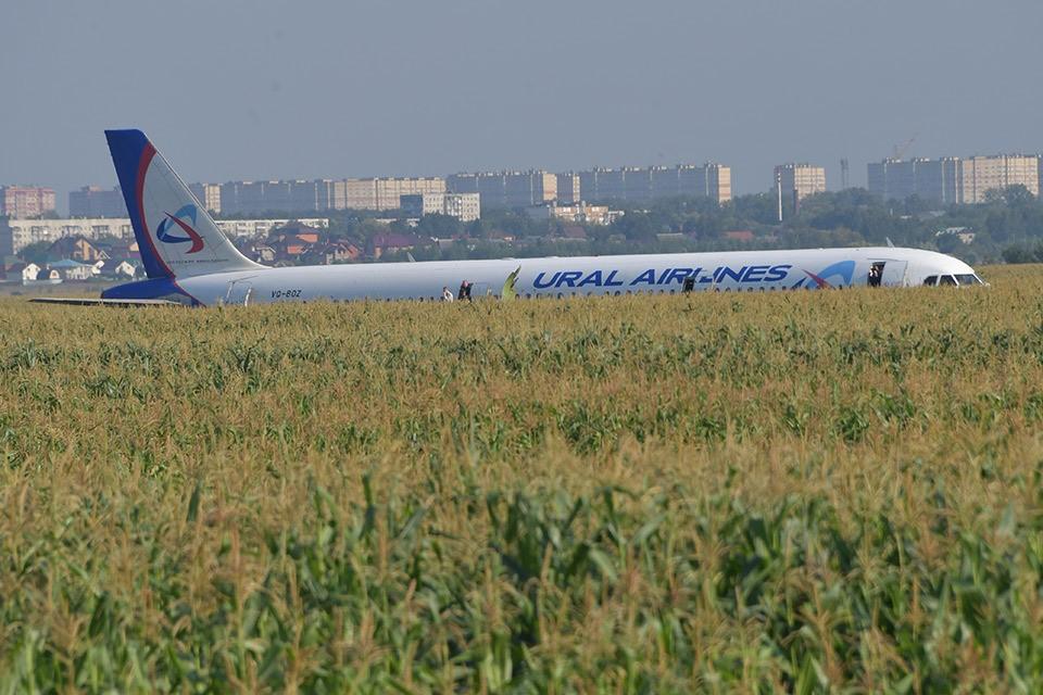 Самолёт А321 «Уральских авиалиний» вынужденно приземлился в кукурузное поле - недалеко от подмосковной деревни Рыбаки.