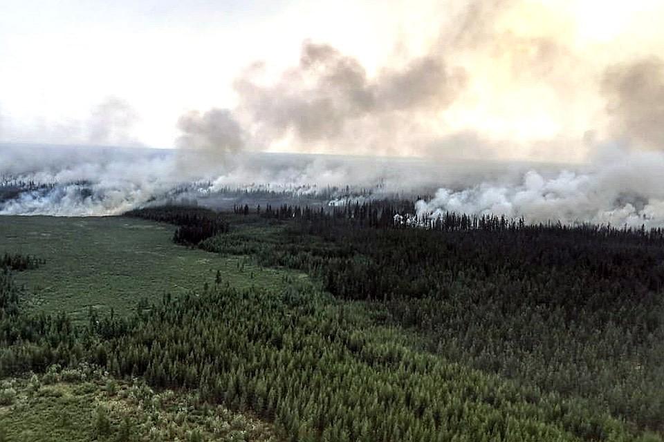 Лесные пожары в Сибири ускорят глобальное потепление