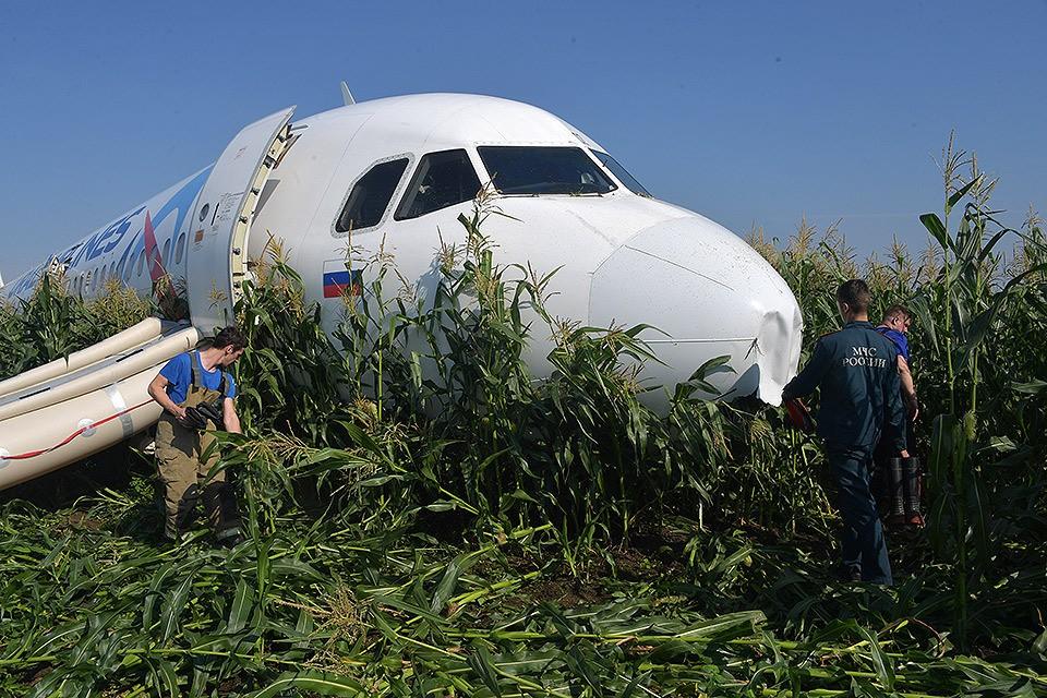 Экипажу ужалось посадить самолет в поле.