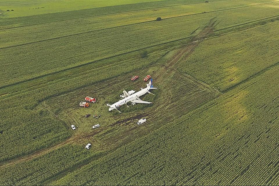 Вид места аварийной посадки. Хорошо виден след, пропаханный брюхом самолета. Такую посадку уже назвали ювелирной. Фото: RUPTLY