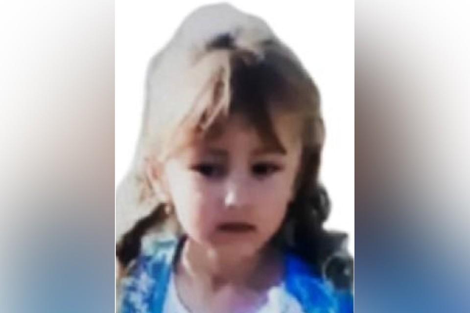 """Пропавшую 5-летнюю девочку Зарину Авгонова ищут в лесу второй день. Фото: ПСО """"Волонтер"""""""