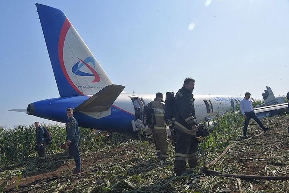 Двигатели у самолета отказали после столкновения со стаей птиц.