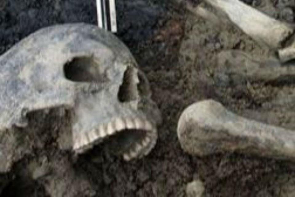 Ученые нашли в Ярославле массовое захоронение 1238 года. Фото: archaeolog.ru