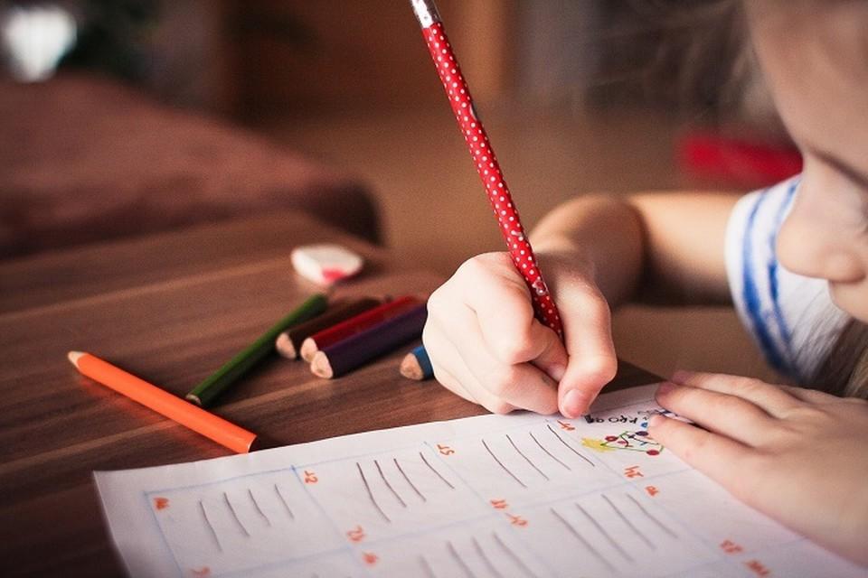 Результаты PISA показали низкую функциональную грамотность наших учащихся.