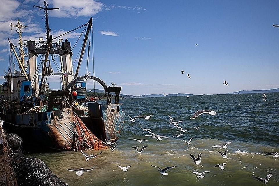 Инцидент произошел 17 сентября в районе банки Кита-Ямато (Японское море)