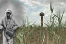 «По земле, как по воде, шли огромные волны!»: как на Ставрополье взорвали ядерную бомбу