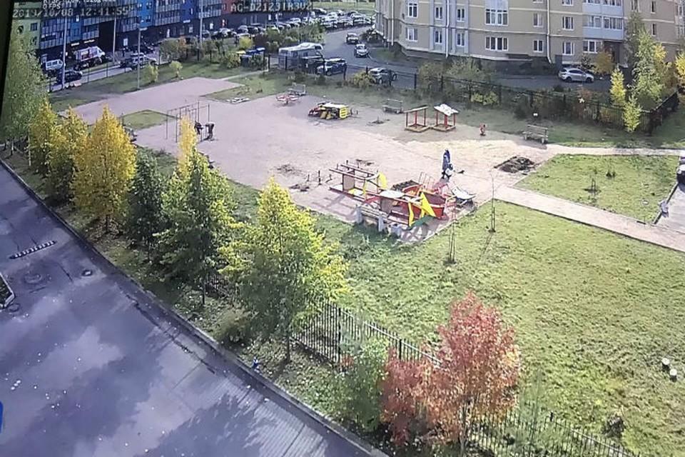 Детскую площадку демонтировали, так как ее не согласовали с городом. Фото: vk.com/pushkin_story.