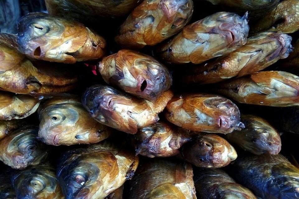 В Тюменской области усомнились в диагнозе «гаффская болезнь», которую поставили тоболякам после употребления рыбы