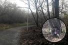 Стая собак, бомжи, открытый колодец и погребальный венок — по такой дороге дети ходят в Челябинске в школу