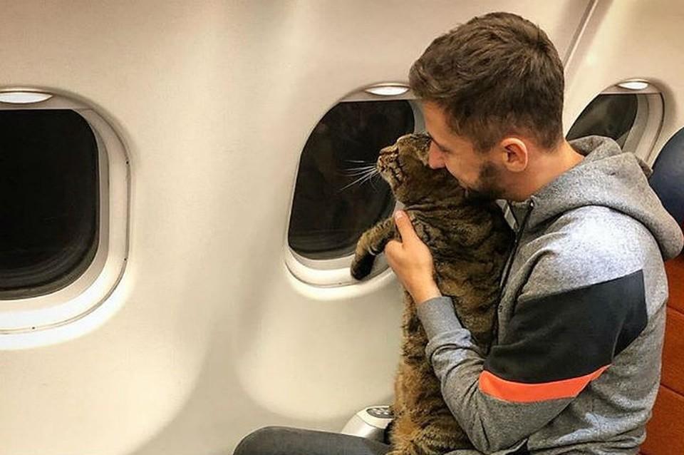 Михаил 14 лет был лояльным клиентом авиакомпании.
