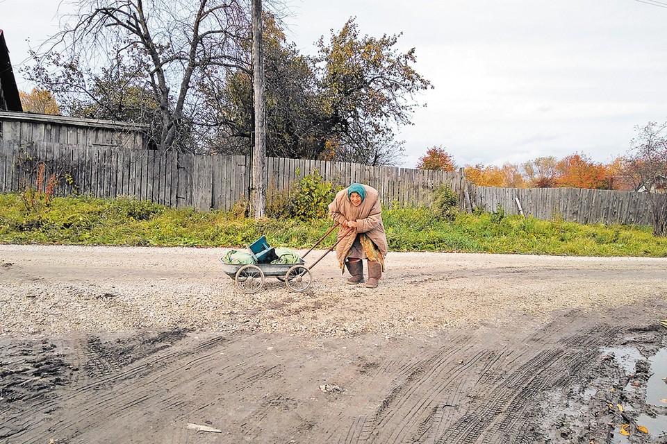 Яблоки у Марии Дмитриевны заканчиваются - скоро зима. А газа все нет. Может, среди читателей найдется кто-то, кто решит помочь бабушке и протянуть эти несчастные 40 метров газопровода к ее избушке?