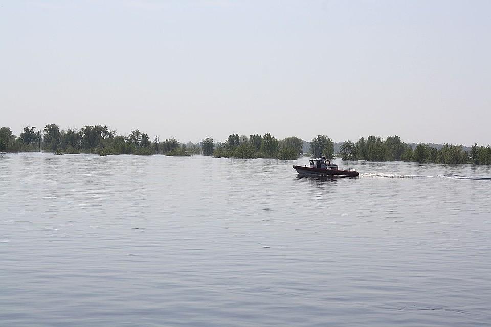 Уровень воды в дельте Волги уже превышает среднемноголетние значения более, чем на метр. Фото из архива КП.