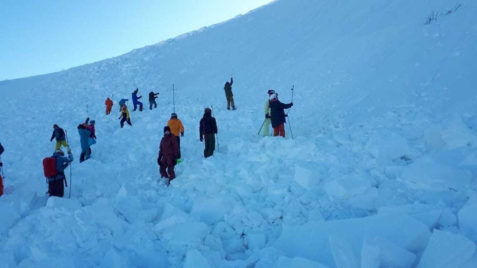 Склон после схода лавины. Фото: Приисковый, Главстан, Трансваль, группа в соцсети.