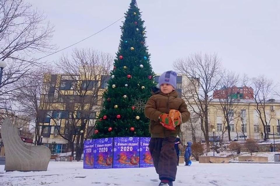 Во Владивостоке установили 10 нарядных елок. Фото: Станислав Луценко