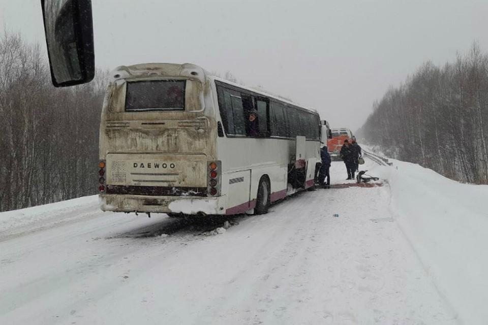 Под Комсомольском столкнулись «лоб в лоб» автобус и легковое авто