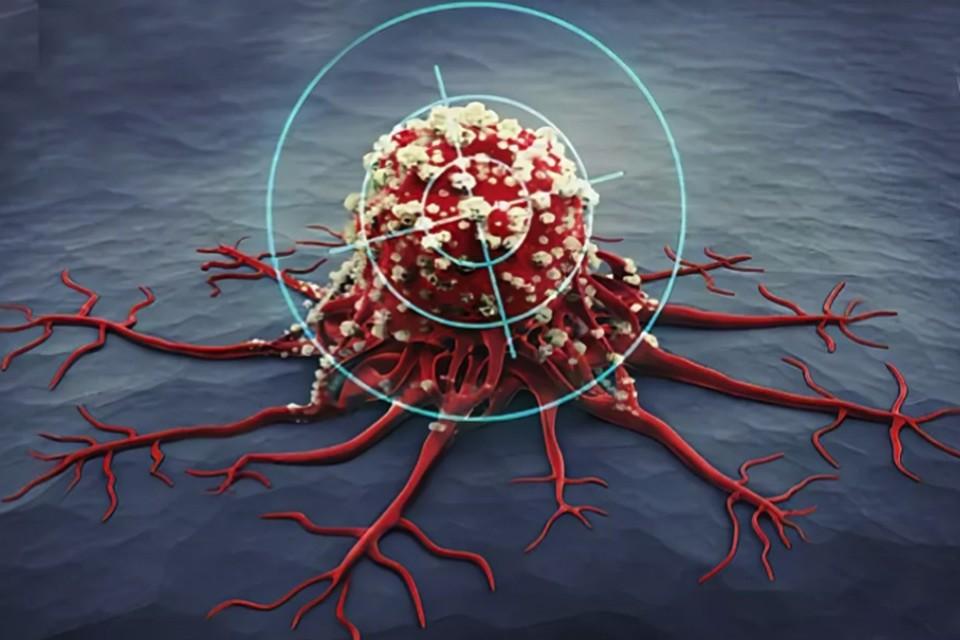 Есть основание полагать, что создано универсальное лекарство от рака.