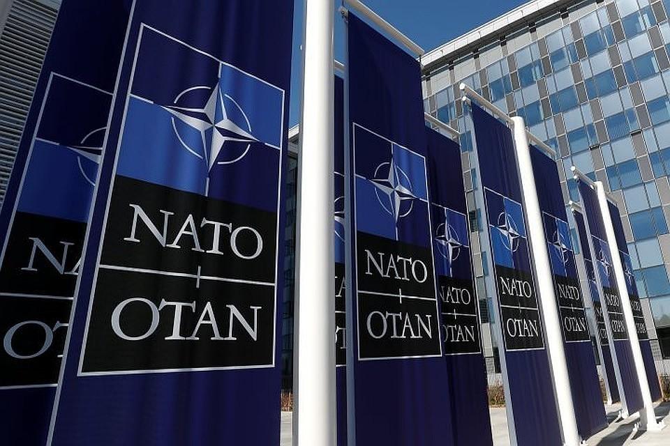 НАТО исполнилось 70. И оно умирает от смерти мозга?