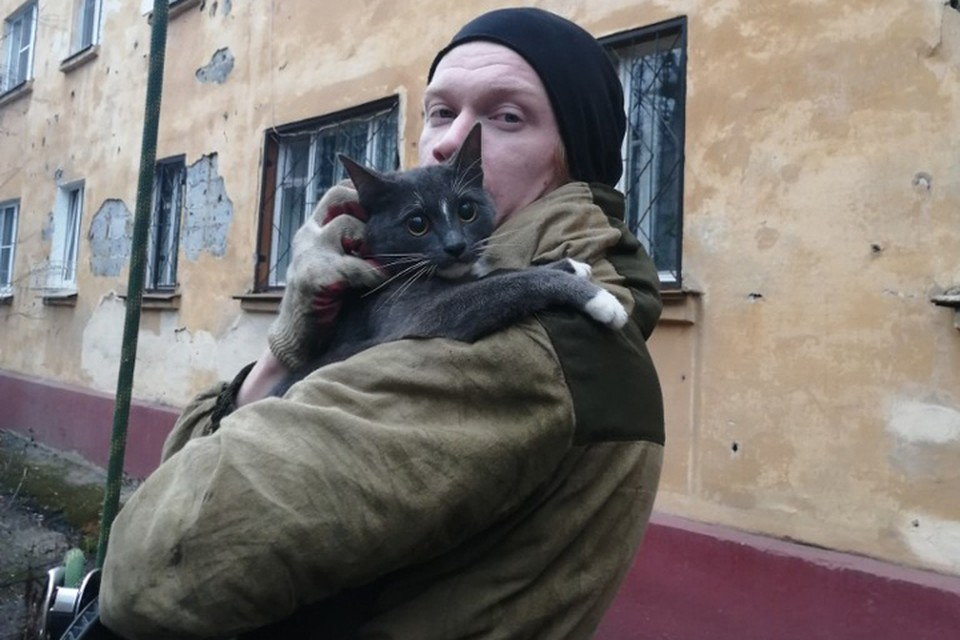 «Как тот солдат»: Спасая кота-верхолаза, нижегородец сам застрял на дереве. ФОТО: Лариса Саплина.
