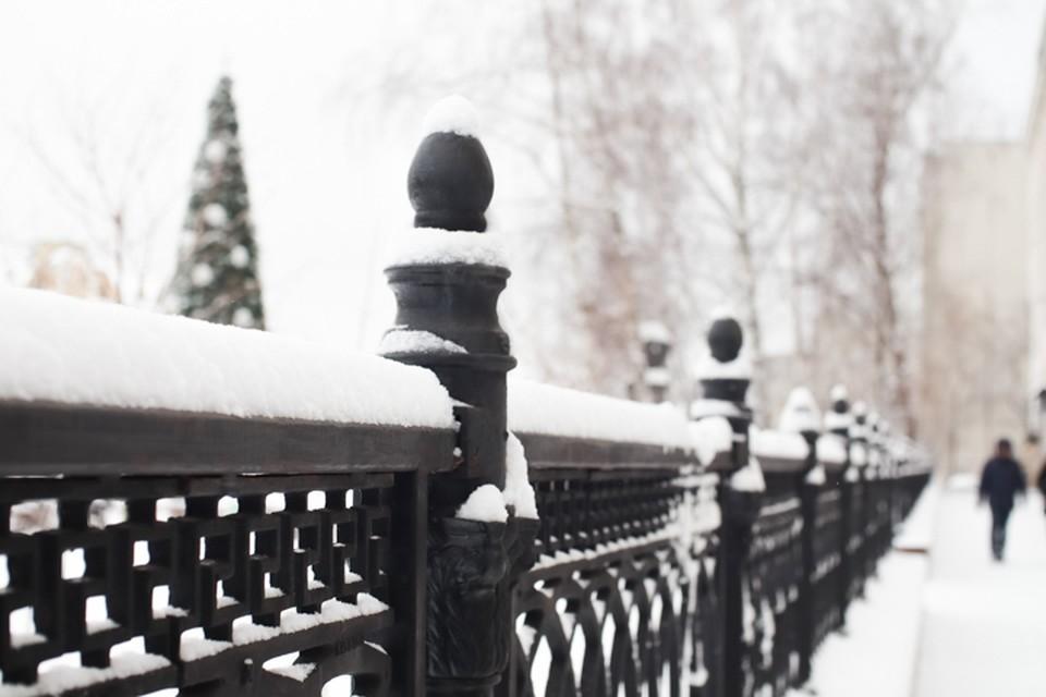 Погода в январе теплая, но норовистая.