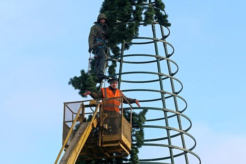 В новом году власти Пскова мечтают о новой ёлке.