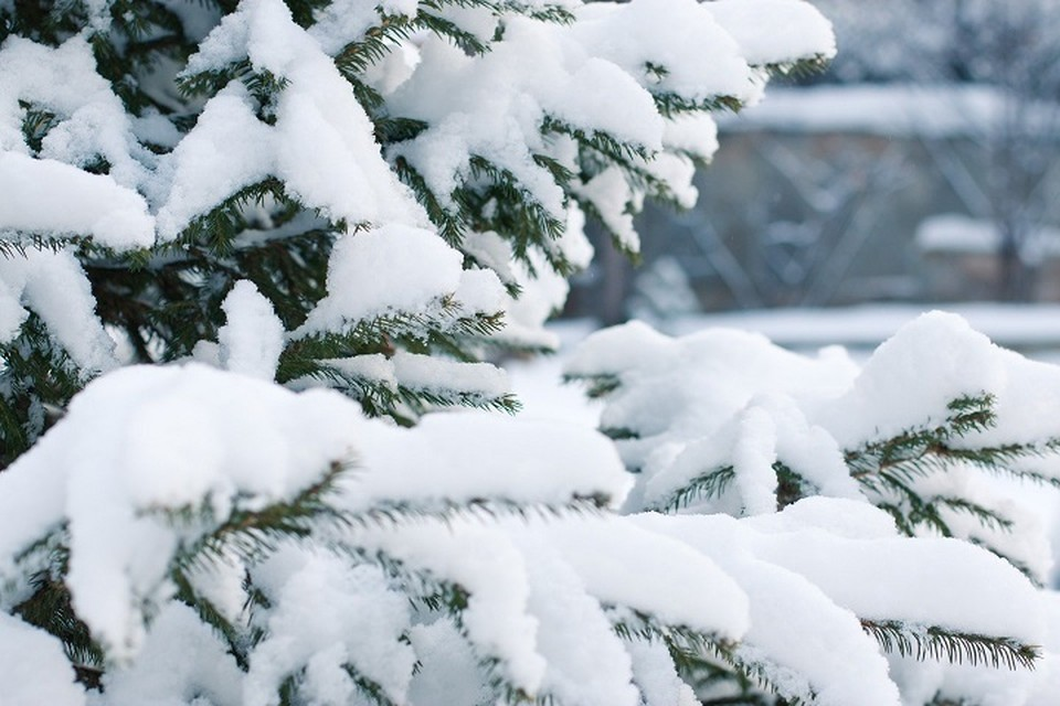Погода в Югре 15 января: жителям следует подготовиться к похолоданию