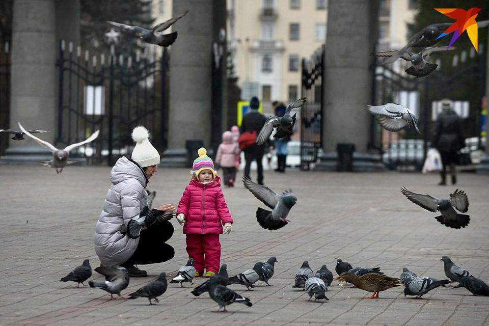 Аномально теплая зима в Беларуси.