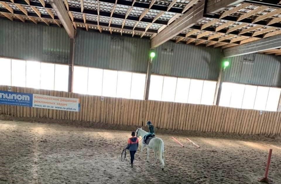 Конюшни могут снести уже через пару дней, а лошади окажутся на улице.
