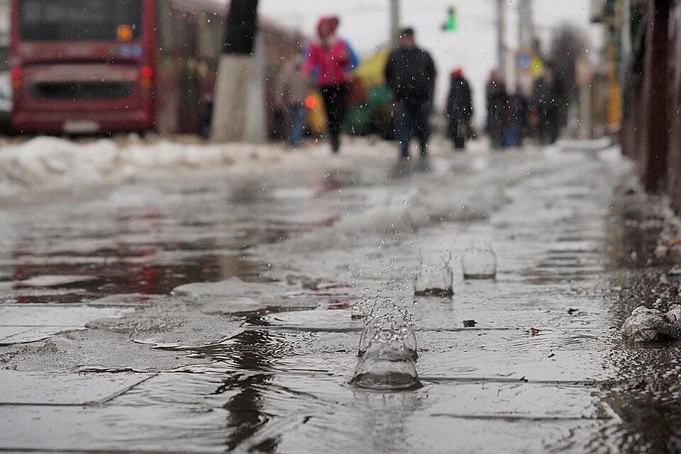 В Краснодарском крае в конце января пройдут дожди