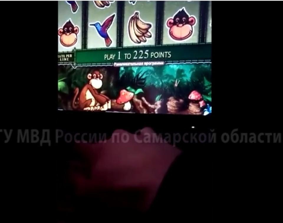 """В игорном клубе посетителям предлагали сыграть с """"макакой"""""""