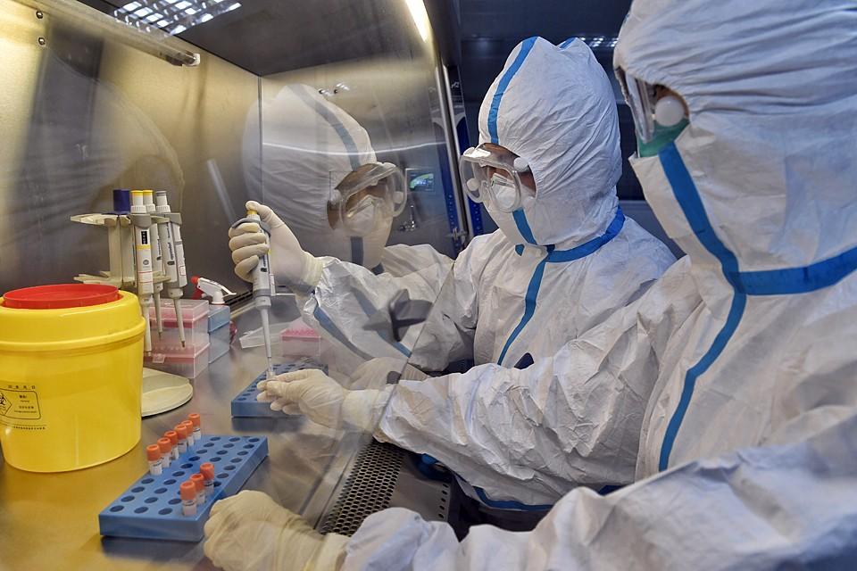 Mногие микробиологи, генетики и инфекционисты заявляли, что рекомбинация китайского коронавируса произошла без всякого человеческого вмешательства