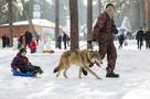 «Детей катал на санках живой волк»: 12 лучших фото с Масленицы в Челябинске