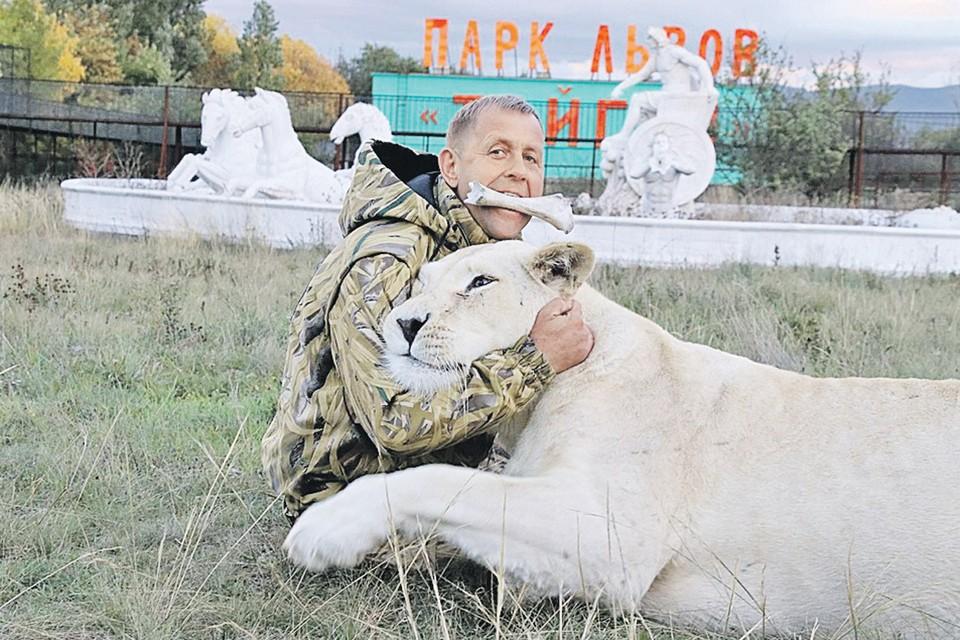 Кость в зубах, львица в руках: человек - лев Олег Зубков среди хищников чувствует себя своим. Фото: park-taigan.ru