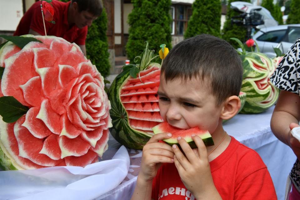 Приживутся ли у нас вкусные бахчевые культуры? Ученые постараются.