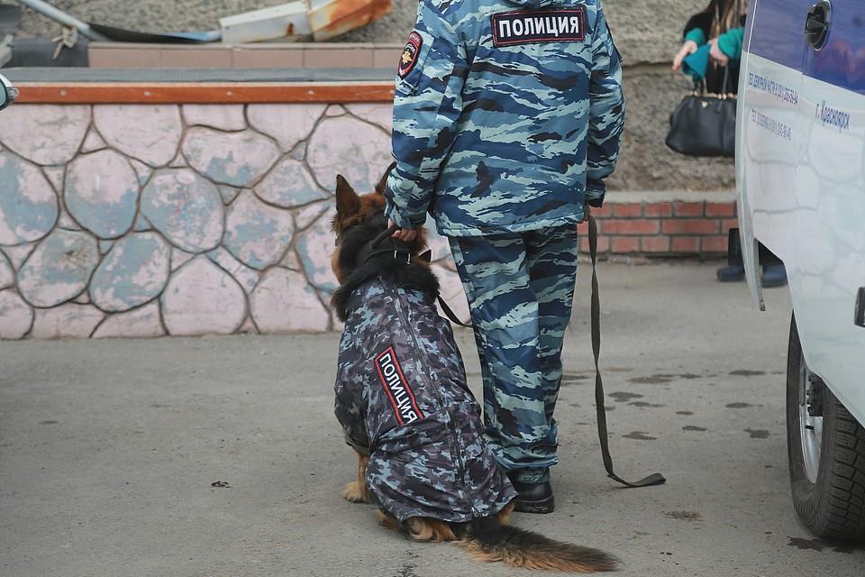 Полиция и ФСБ задержали банду инспекторов-взяточников в Красноярском крае.