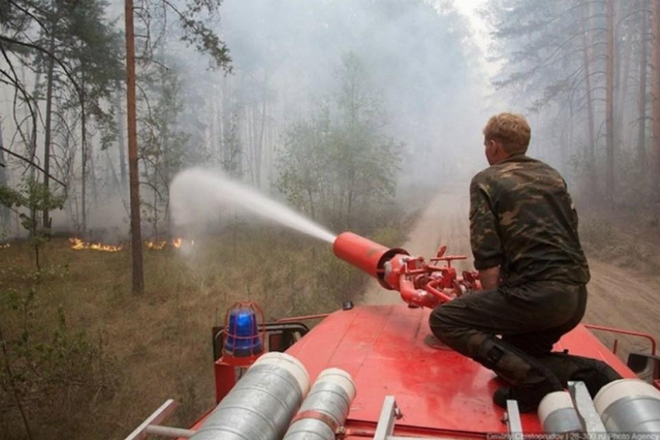 Особый противопожарный режим ввели в одном районе Хабаровского края