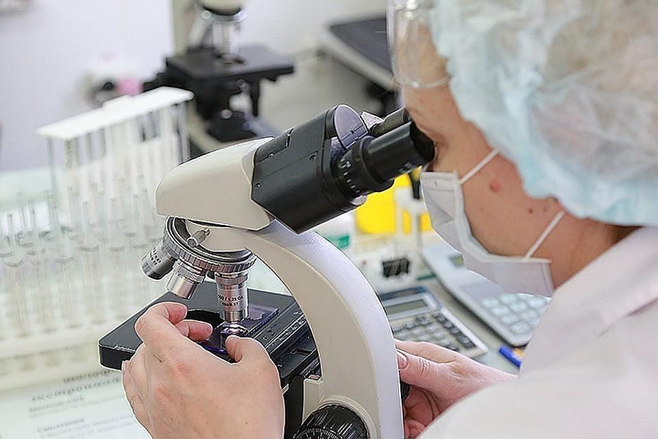 """""""Вектор"""" намерен провести доклинические испытания вакцины от коронавируса до 22 июня"""