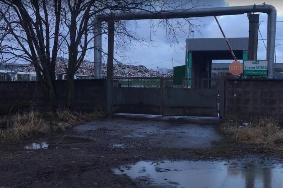 """Жители Янино жалуются на завод, который не дает им спокойно жить. Фото: скриншот видео/""""Зеленый Фронт""""."""