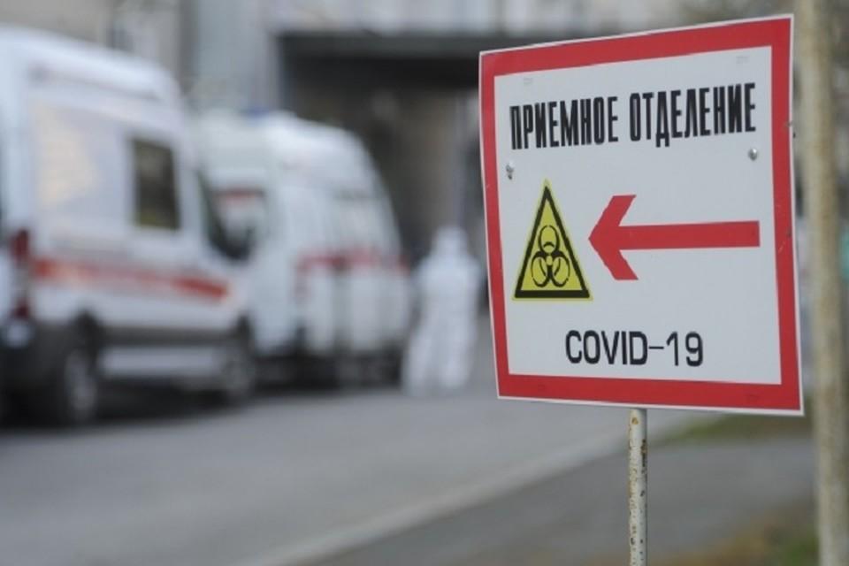 Коронавирус в Ростове-на-Дону, последние новости на 11 мая 2020 года: зарегистрирован 1851 случай заболевания COVID–19