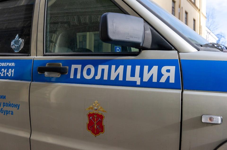 Полиция задержала участниц шашлыков на Вечном огне в Кронштадте
