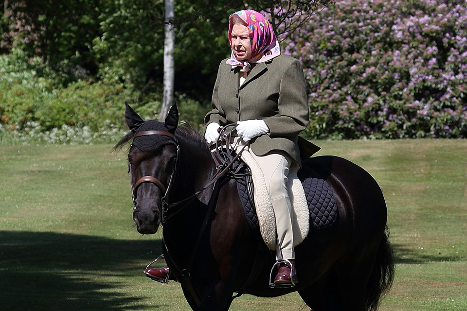 В первый день лета Букингемский дворец разместил снимок Елизаветы II верхом на 14-летнем пони по кличке Ферн