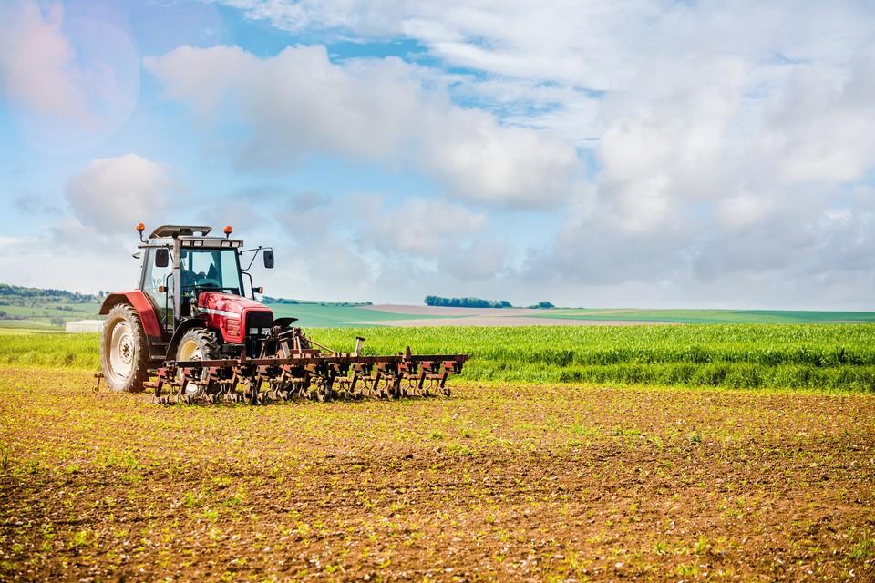 Необрабатываемой земли в России — валом, однако найти ее фермеру почти невозможно.