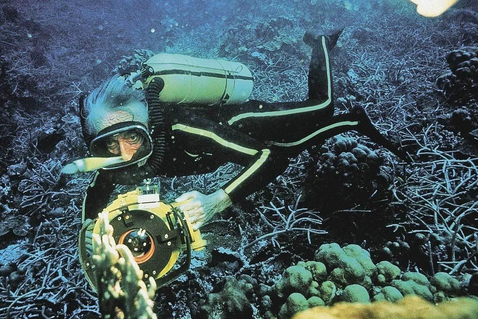 В 1943 году Кусто стал одним из изобретателей акваланга. С тех пор подводный мир заиграл новыми красками. Фото Turner Network Tv/Kobal/Shutterstock/REX