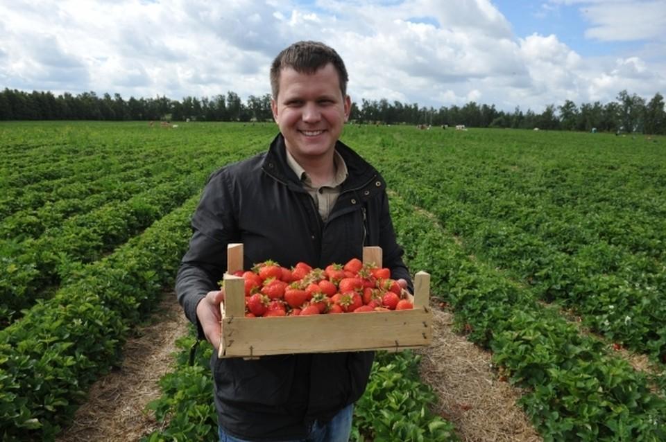 Бизнес в сельском хозяйстве можно делать на всём - даже на ягодах!