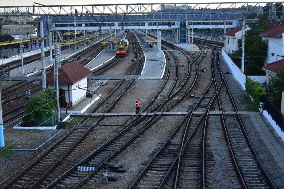 Через новую станцию будут проходить как пригородные поезда, так и дальнего следования.