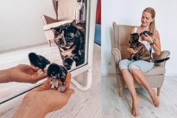 Мяу против ко-ко-ко: сибирячка выходила курицу и подружила ее с кошкой