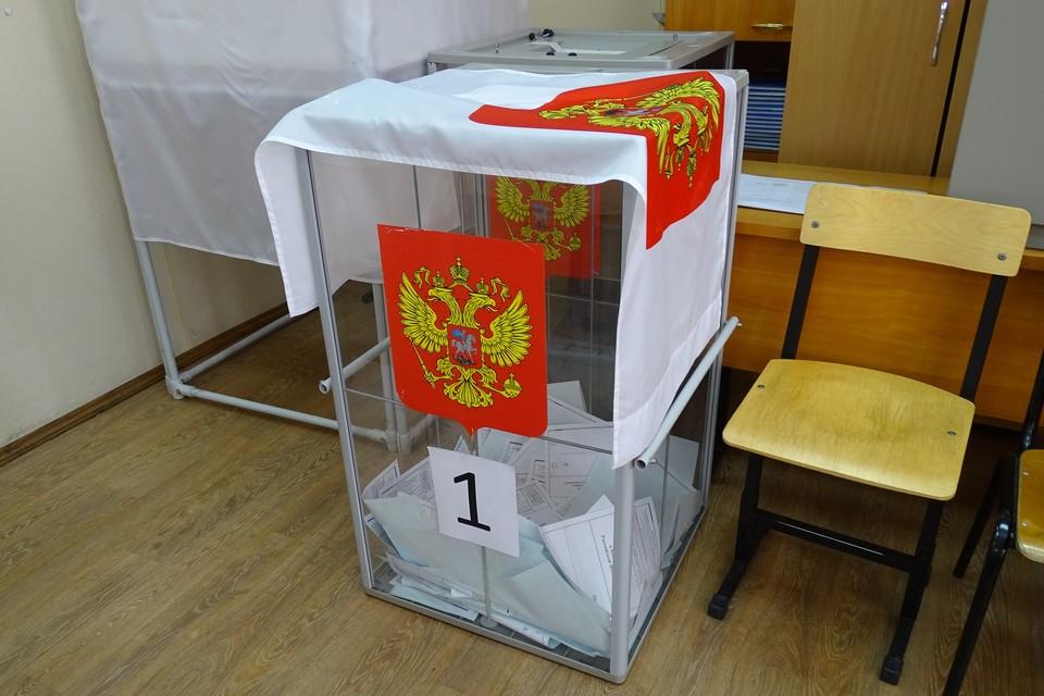 Большинство липчан одобрили поправки в Конституцию РФ