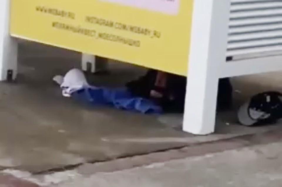 Парочку заснял один из отдыхающих на пляже. Фото: кадр из видео.