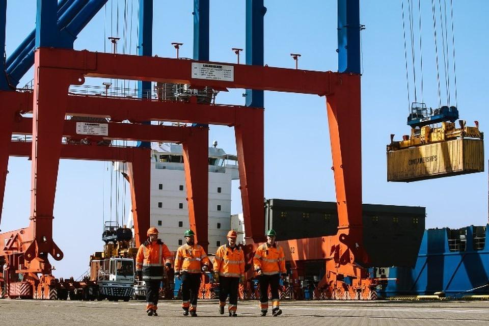 Ежегодно ММПК «Бронка» обслуживает сотни судов, доставляющих в Россию оборудование, машины и опасные грузы. Фото: предоставлено ММПК «Бронка».
