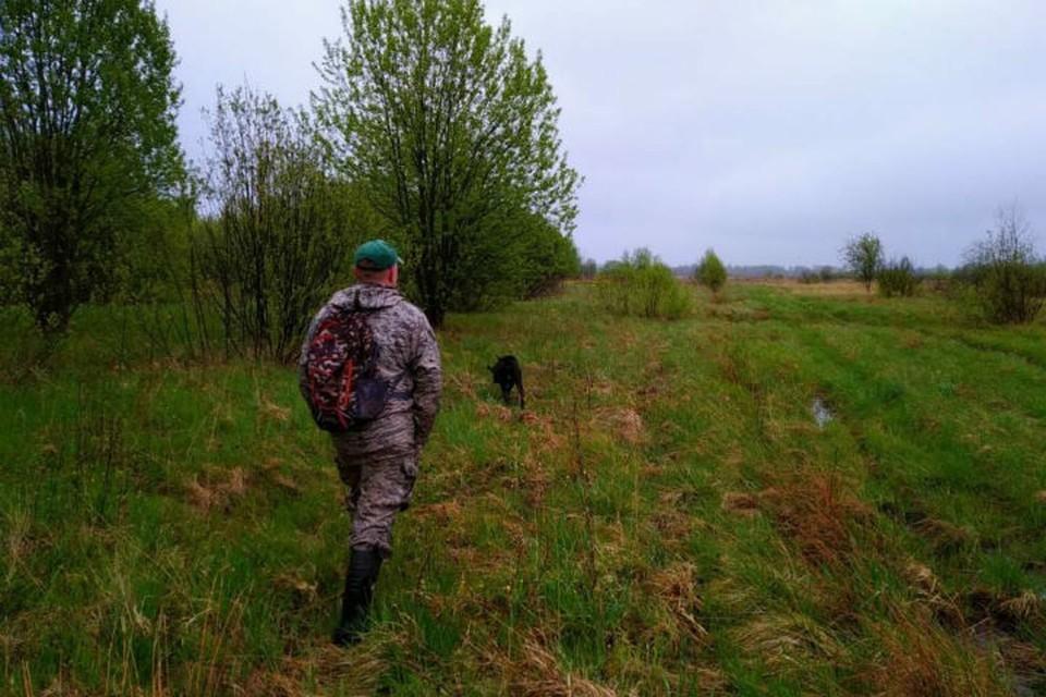 Продлится сезон охоты на пернатую дичь до 15 ноября